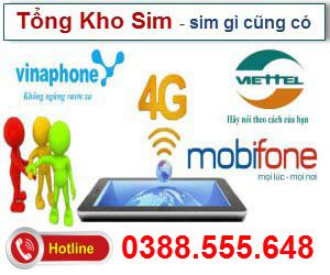 banner-tong-kho-sim-so-300x250